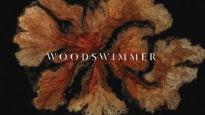 WoodSwimmer ( Bedtimes Music Video )